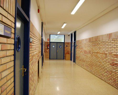 Korridorea